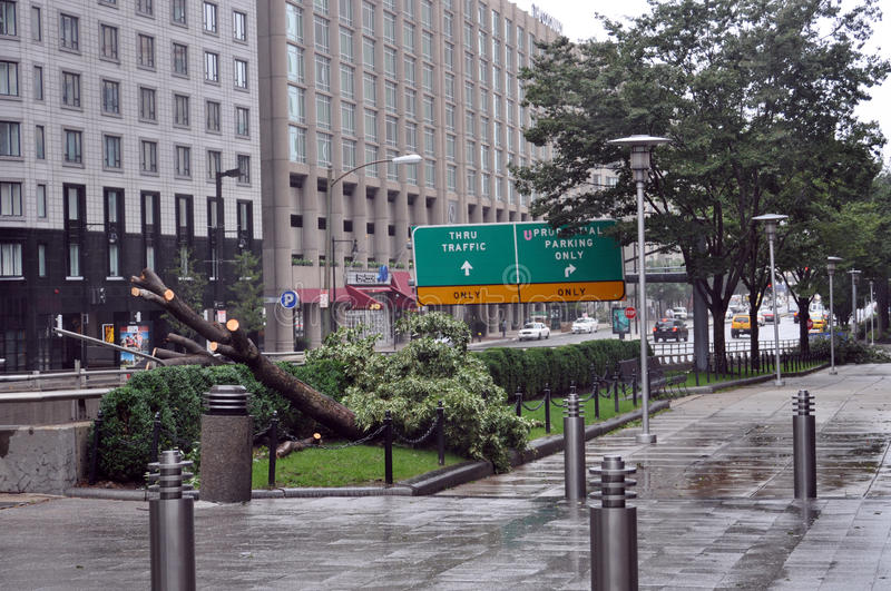 Street of Boston during Hurricane Irene. 28th August 2011, Boston - Huntington street in Boston with an uprooted tree during Hurricane Irene royalty free stock image