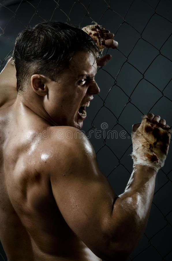 Street fighter. Vertical photo muscular young guy street-fighter, aggression frightening yell , hard light stock photos