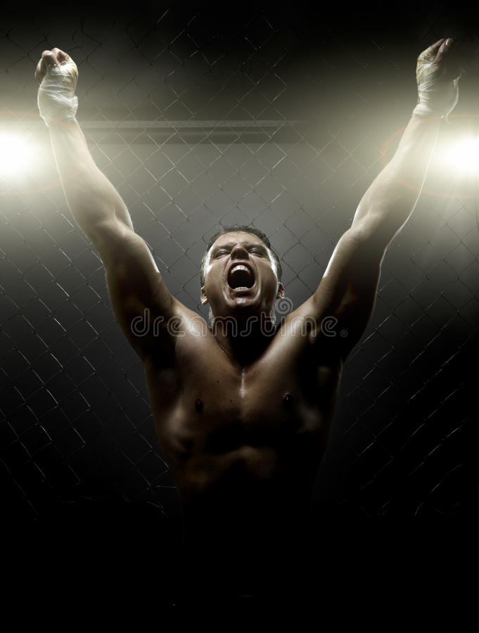 Street fighter. Vertrical photo muscular young guy street-fighter, triumphant cries yell , hard light stock photography