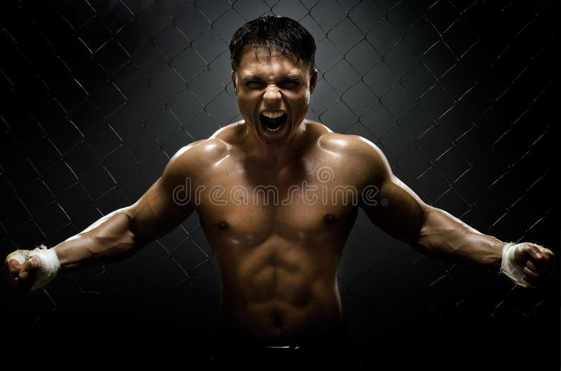 Street fighter. Horizontal photo muscular young guy street-fighter, aggression frightening yell , hard light royalty free stock images