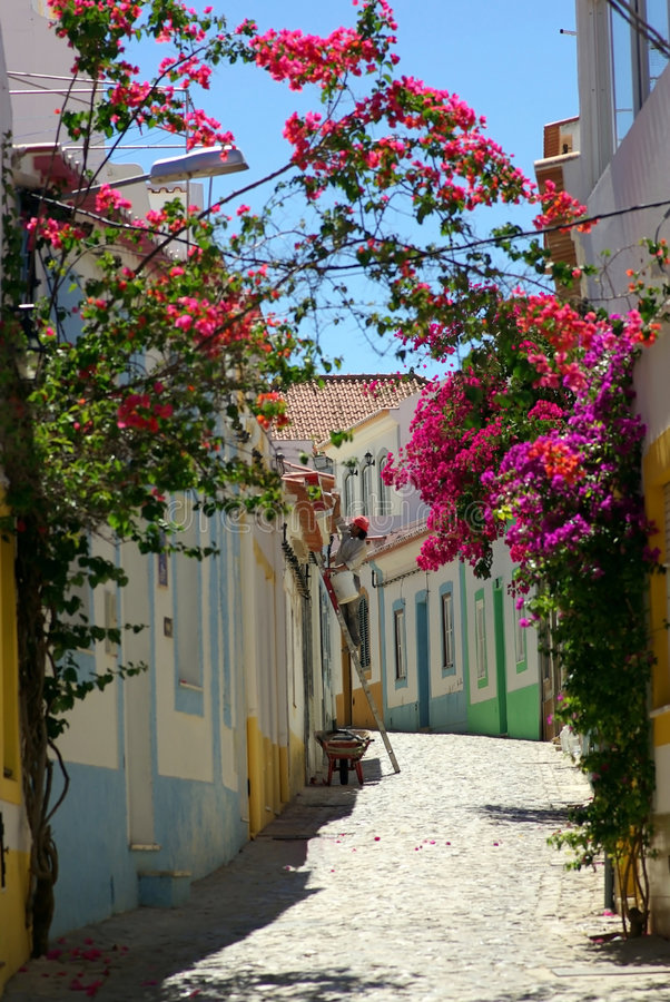 Street With Flowers stock images