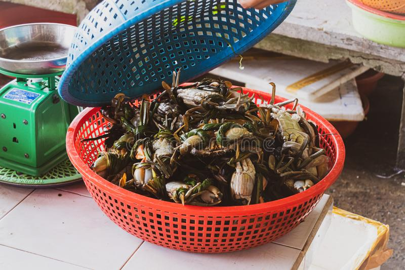 Street food markets in the tourist cities of Vietnam, South Asia. Typical crab preparations in fish markets stock image