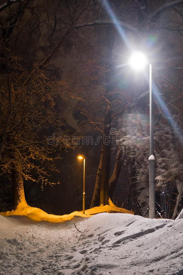 Free Street Lamp And Trail In Snow In The Winter Park In The Evening Royalty Free Stock Images - 137361079