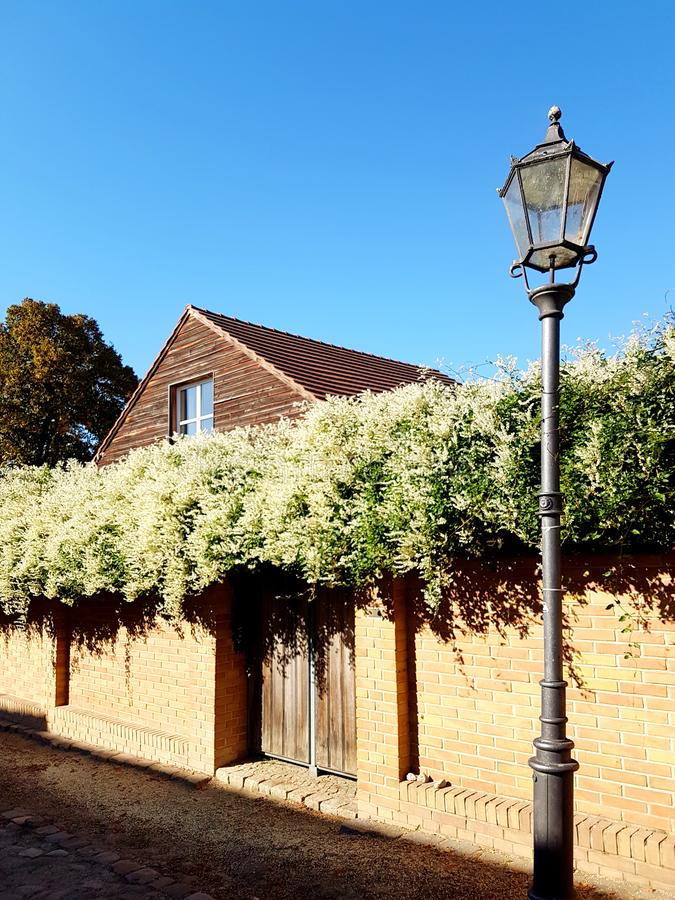 Street lamp with fence and bush. Traditional street lamp on a street with fence and bush in the background royalty free stock photo