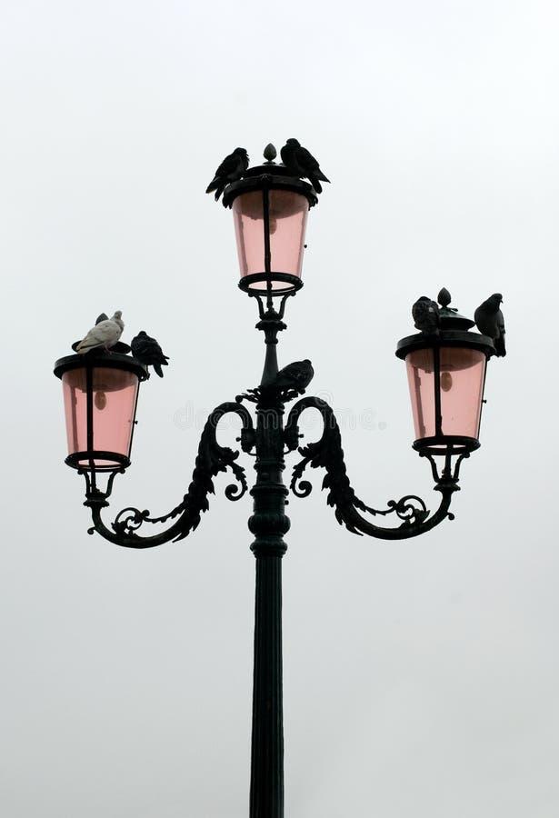 Free Street Lamp, Venice, Italy Royalty Free Stock Photo - 12754785