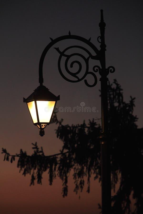 Street Light. Street lamp in working mode in the winter season royalty free stock photos
