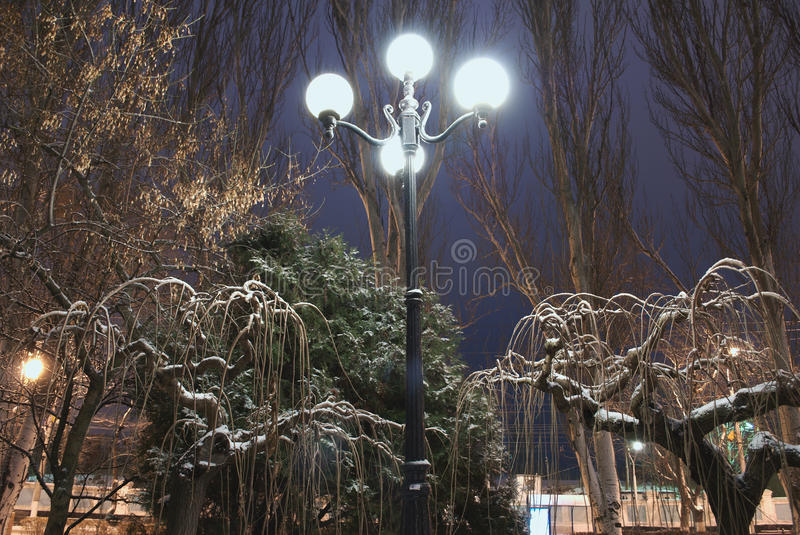 Street Lantern in the Night. Streetlight surrounded by trees covered by snow stock image
