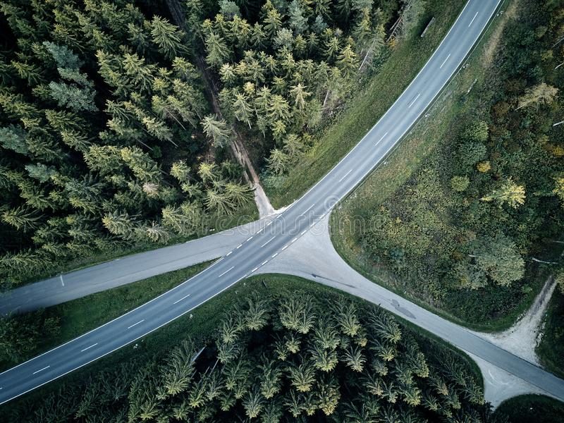 Street between large trees from top with drone aerial view, landscape, autumn stock image