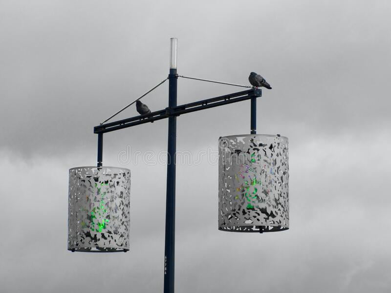2 Street Light With 2 Bird Grayscale Photography Free Public Domain Cc0 Image