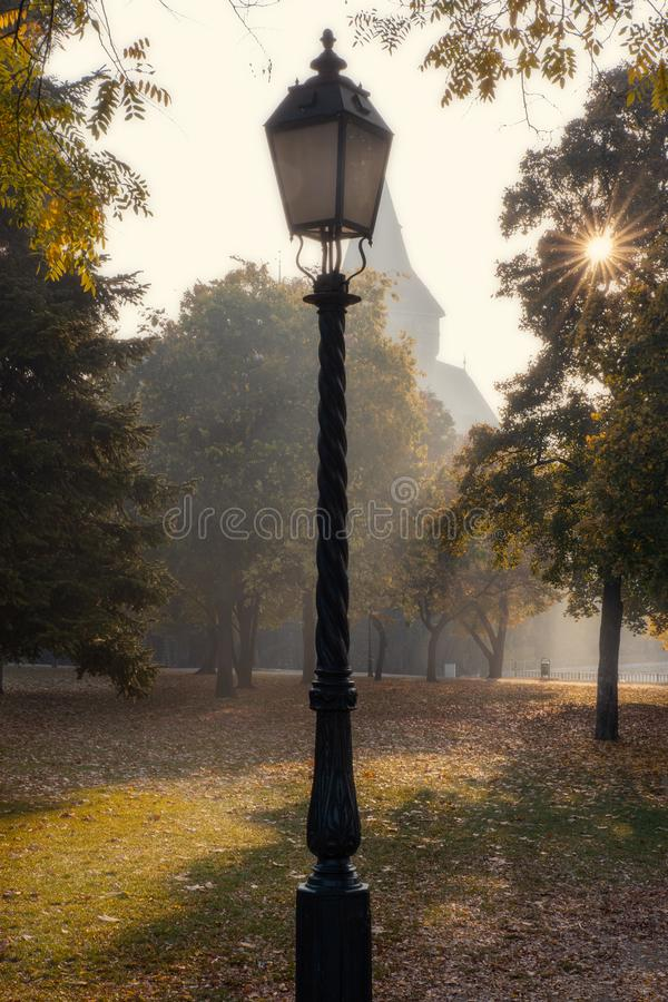Street light and morning sun shining through the trees in Budapest city park stock photos
