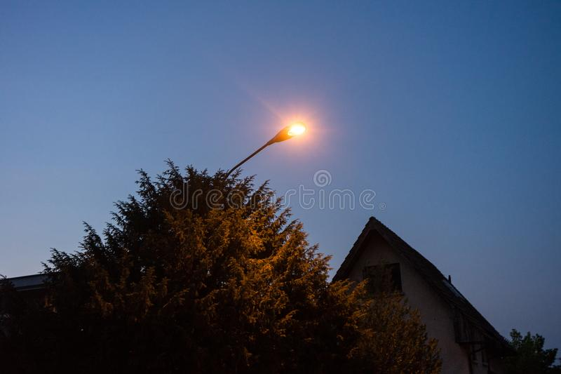 Street light night with tree blue hour evening with house roof stock photos