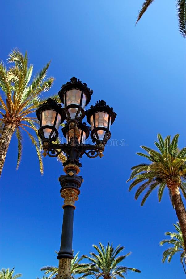 Street light and palms. royalty free stock photos