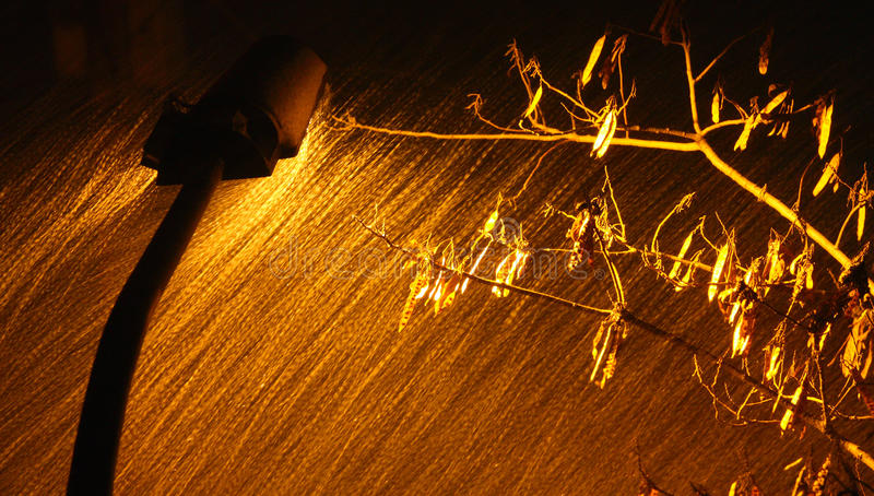 Download Street Lights In The Blizzard Stock Image - Image: 12986371