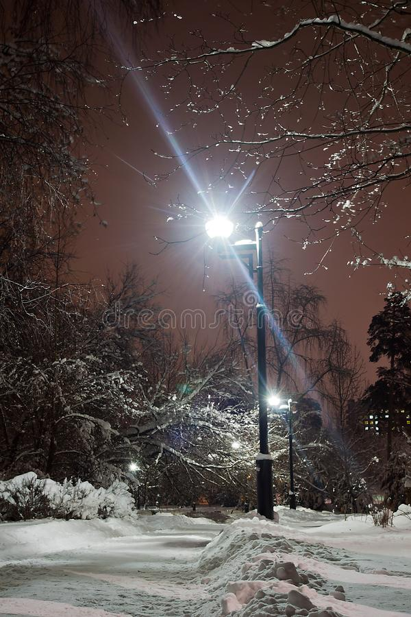 Street lights and path in the snow in winter park royalty free stock photos