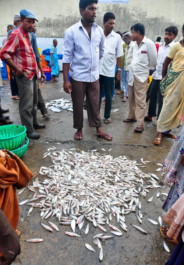 Street Market Selling Fish