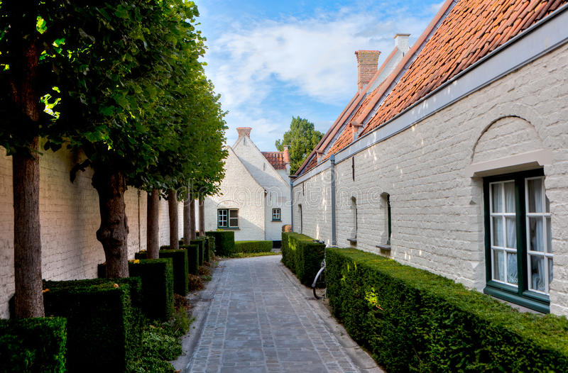 Street with medieval houses and trees in Bruges / Brugge, Belgium. Narrow street with old white houses and a tree in the medieval streets of Bruges, Brugge, in royalty free stock photo