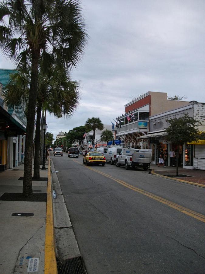 a street in miami with palms stock photo