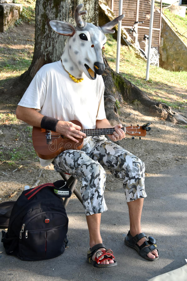 Street music with cow mask stock photos
