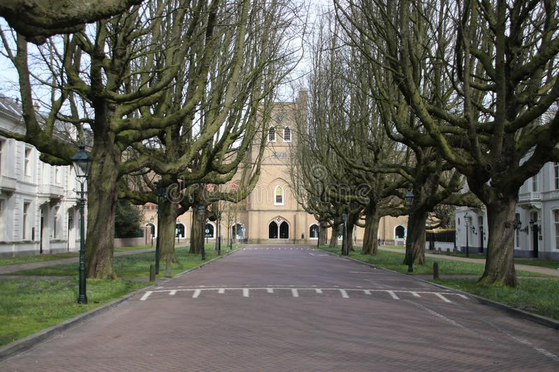 Street named Sophialaan with very special growed trees ending at the former royal horse place of king Willem II. royalty free stock photography