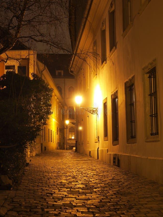 Street at night royalty free stock photos