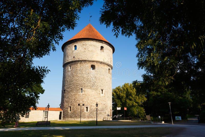 Street Of Old City Of Tallinn, Estonia Capital. Tallinn, Estonia. Medieval Tower Kiek-in-de-Kok In Park On Hill Toompea stock photography