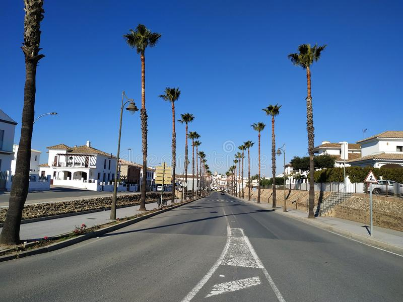 Street with palm trees in Cartaya province of Huelva Spain. Photo taken in 2019 stock images