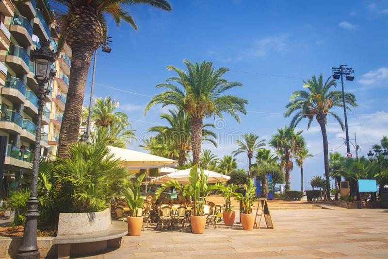 Street with palms trees on Waterfront in Lloret de Mar on sunny clear summer day. Lloret de Mar, Costa Brava, Spain stock images