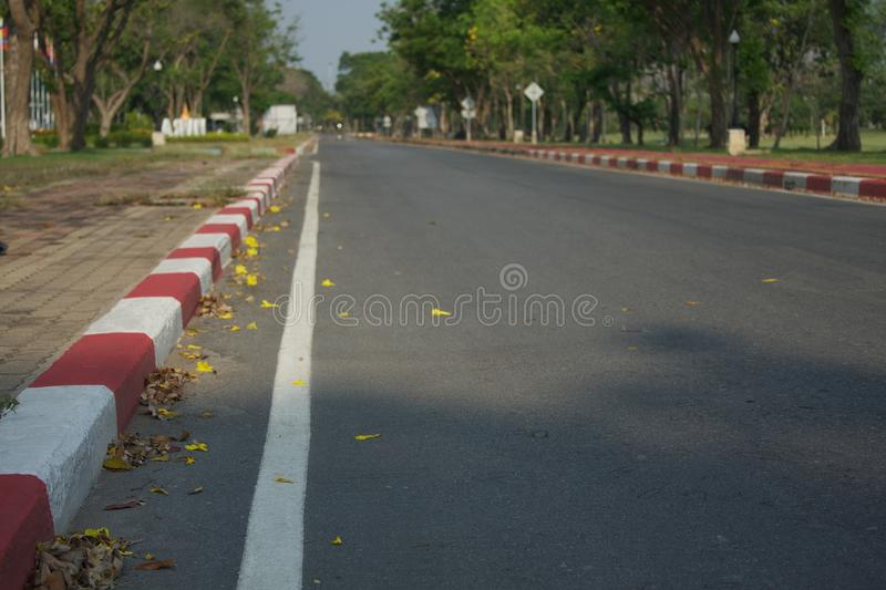 The street in the park royalty free stock photography