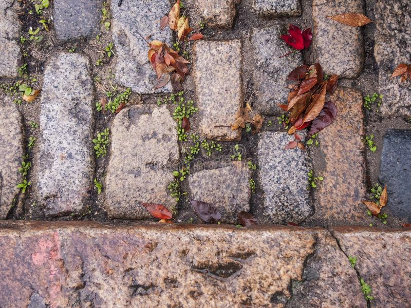 Street paved with sett stones. Sett stones used to pave historic street in New Bedford Massachusetts stock images