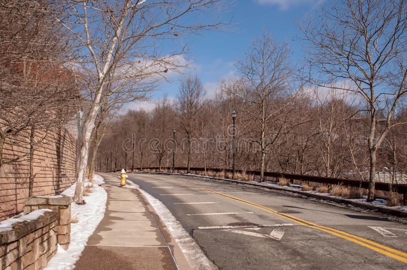 A street in Pittsburgh, Pennsylvania, USA in winter. With snow in the trees lining it royalty free stock photos