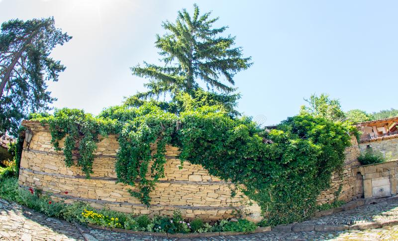 Street plants on a stone wall in Zheravne, Bulgaria. Mountain eco-village Zheravna - Bulgarian national carpet center, rural tourism, national rural architecture royalty free stock photography