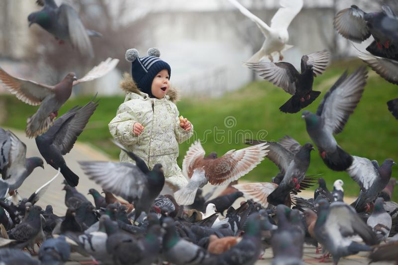Street portrait of the little boy feeding pigeons with bread.