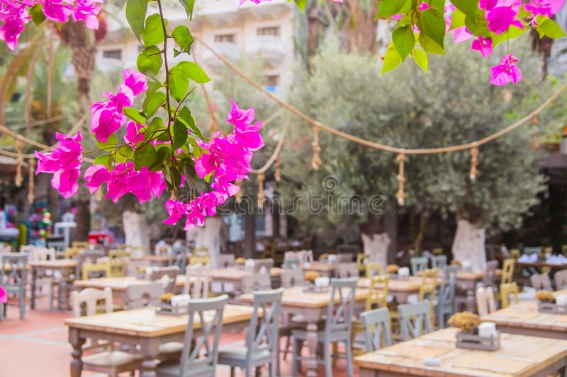 Street restaurant with eco wooden tables. Natural style. The hotel`s outdoor restaurant is surrounded by green plants with wooden tables. Nobody. Focus on pink royalty free stock photos