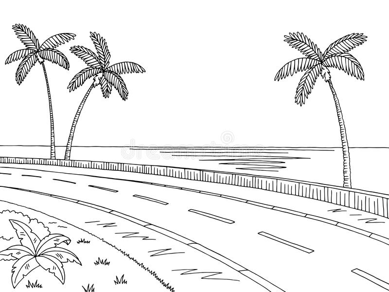 Street road graphic palm tree black white landscape sketch illustration. Vector vector illustration