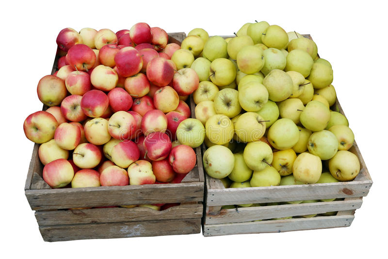 Street sale of fresh green and red apples royalty free stock images