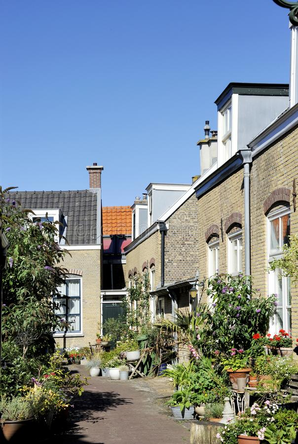 Street scene with houses in old town of Scheveningen, The Hague. Street scene with houses and front gardens in old town of Scheveningen, The Hague, South Holland royalty free stock photos