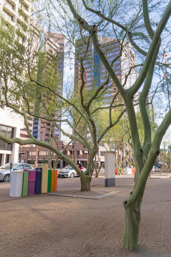 Colorful post boxes and trees in downtown phoenix Arizona. Daily street scene in phoenix Arizona, glass skyscrapers and colorful mail newspaper boxes at local stock photo