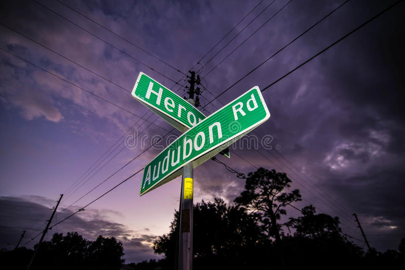 Street Signs at Sunset. Street Signs in Kissimmee, Florida at Sunset royalty free stock image