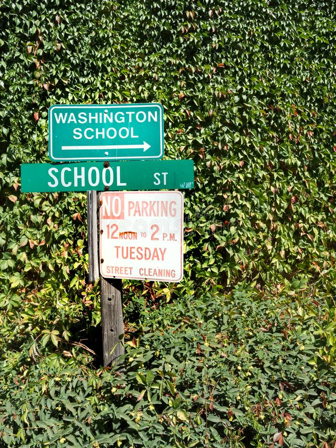 Street signs, Washington, California. Street signs surrounded by foliage. Washington, California royalty free stock photos