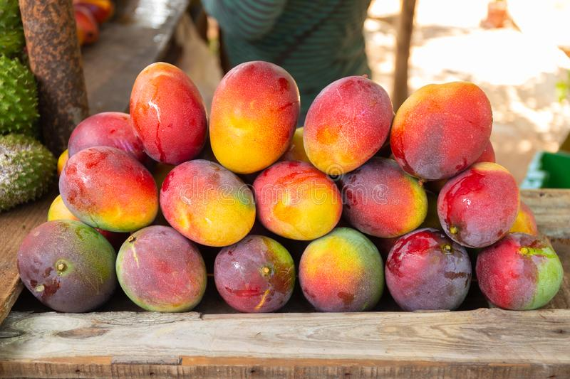 Street stall with mangoes royalty free stock photos