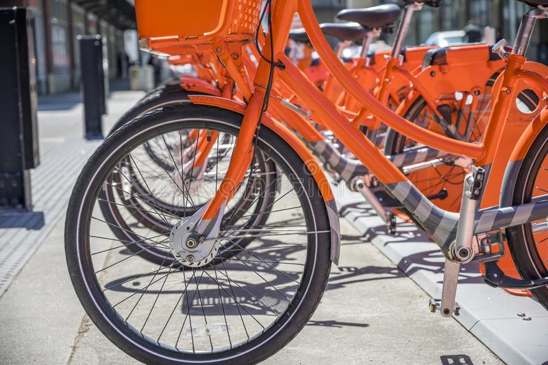Public rental parking of row of orange bicycles with basket for cycling enthusiasts around the city. Street transportation orange public rent bicycles with royalty free stock images
