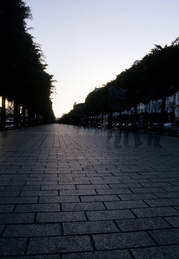 Street- Tunisia royalty free stock photography