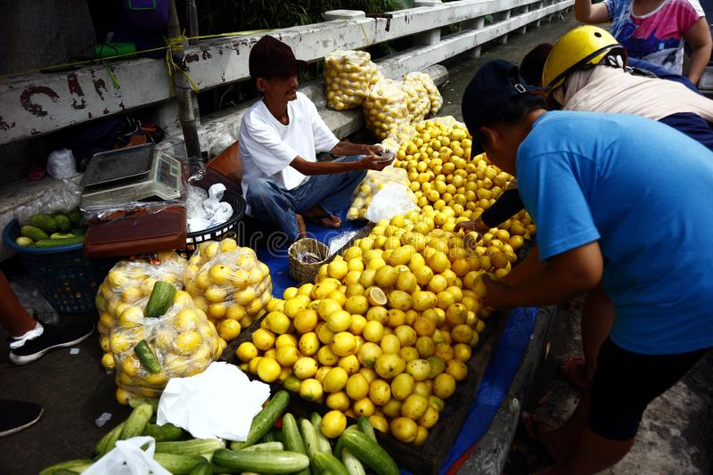 A street vendor sells fresh and ripe lemon at a sidewalk along a highway royalty free stock photos