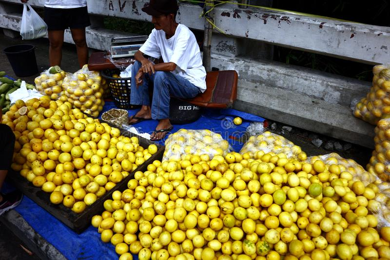 A street vendor sells fresh and ripe lemon at a sidewalk along a highway royalty free stock photo