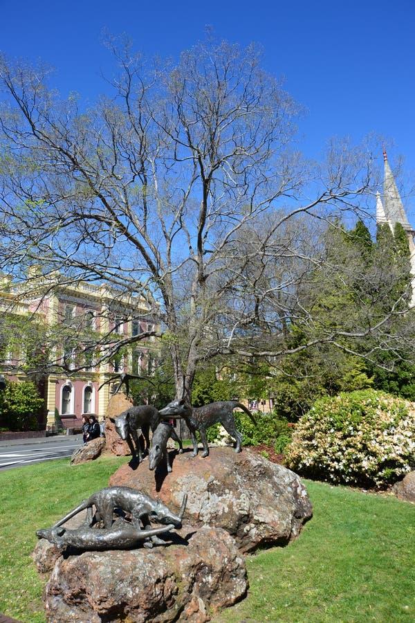 Street View at Tasmania stock images