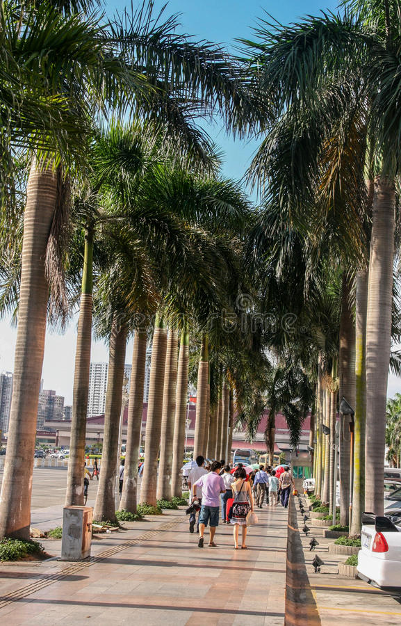 Download The Street View In Zhuhai ,china Editorial Photo - Image: 41864936