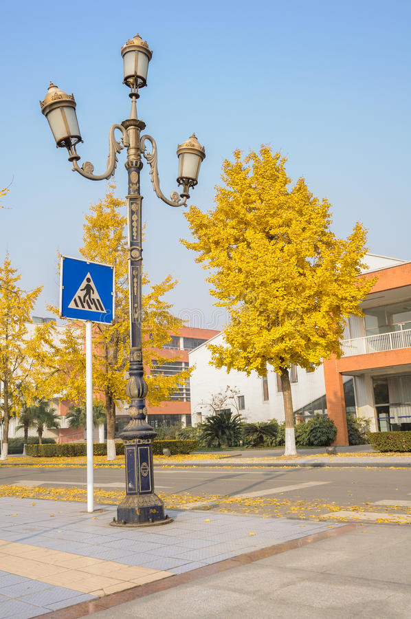 Streetlamp And Crossing Sign Royalty Free Stock Image