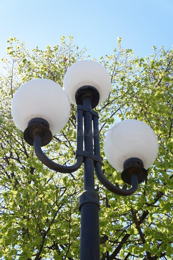 streetlight foto de archivo