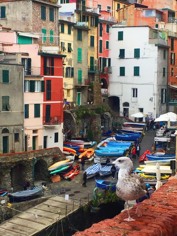 Streets of italy, cinque terre royalty free stock image