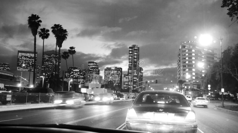 Streets of Los Angeles at night - traffic jam, moving cars, lights, palm trees and skyscrapers building - all in black and white royalty free stock photo
